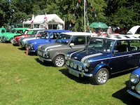 Minis as far as the eye can see