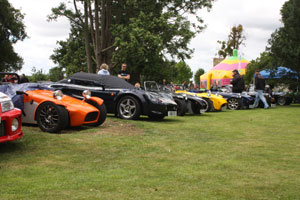 Line up of cars