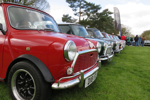 Line up of Minis