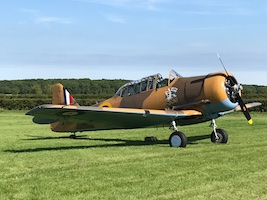 Harvard Aviation T6 Wacky Wabbit