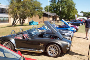 Row of Cobras